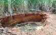 Thanh Hóa: Hố sụt lún bất thường xuất hiện trong vườn nhà dân