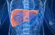 [Đọc nhanh] 5 dấu hiệu cảnh báo bệnh suy gan, ai cũng nên biết để phòng tránh sớm