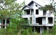 Cỏ dại phủ kín hàng loạt biệt thự bỏ hoang ở Kon Tum