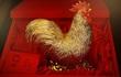 Chuyện lạ: Cánh gà bằng vàng giá trị 1,9 tỷ