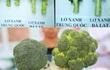 Phân biệt rau củ quả Trung Quốc và Đà Lạt