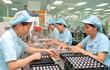 6 tháng, vốn FDI tăng vọt lên 19 tỷ USD