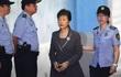 Luật sư bà Park nghỉ đồng loạt, Hàn Quốc hoãn xét xử
