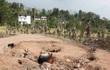 Bãi đất tự bốc cháy âm ỉ suốt 50 năm, người dân đào hố đun nước mà không cần củi
