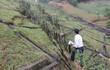 Đề nghị công bố tình trạng khẩn cấp hồ Triệu Thượng 2
