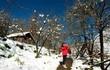 Nếu định lên Sa Pa săn tuyết dịp siêu lạnh này, hãy nhớ làm đủ 5 trải nghiệm cực đáng giá này