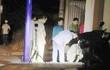 Hai nhóm giang hồ ở Sài Gòn hỗn chiến trong đêm, một người tử vong