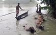 Trung Quốc sửa trạm thủy văn giữa căng thẳng quân sự, hàng vạn dân Ấn Độ lâm nguy