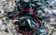 Kỳ lạ: Hàng vạn con sứa biển chết dạt vào bờ biển New Zealand khiến giới khoa học bất ngờ