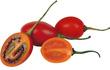 """Cà chua giá 1 triệu đồng/kg gây sốt: Có gì bổ dưỡng mà giá cao """"ngất ngưởng""""?"""