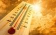El Nino có thể quay lại, mùa hè năm nay nóng hơn