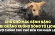 [VIDEO] Chú chó mắc bệnh nặng bị quẳng xuống sông Tô Lịch: Vợ chồng chủ chó đến xin nhận lại
