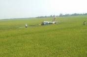Máy bay L-39 của KQVN rơi ở Phú Yên