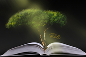 Khám Phá Books