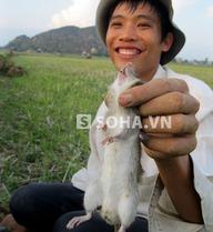 Độc đáo với làng ăn Tết bằng… thịt chuột
