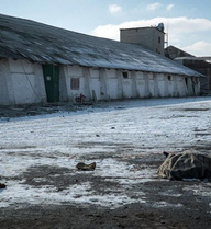 Rùng rợn chuyện từ những người nhặt xác binh sĩ Ukraine