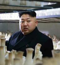 """""""Quỹ đen"""" của ông Kim Jong-un khan hiếm ngoại tệ"""