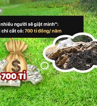 Cỏ ở Hà Nội quý hơn cỏ ở… Bắc Kạn, rác ở Hà Nội kém xa rác ở… Hà Tĩnh