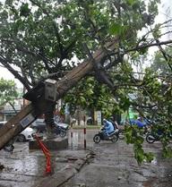3 tỉnh miền Bắc mất điện hoàn toàn sau bão Mirinae