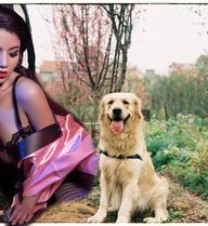 """Dàn hot girl Việt thất bại trước linh cảm của 4 """"thánh dự"""" chó, gà, chim, cá"""