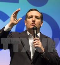 """Thượng nghị sỹ Ted Cruz """"đảo chiều"""", quyết định ủng hộ Trump"""
