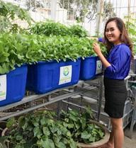 Nữ giám đốc ngân hàng bỏ việc để trồng rau nuôi cá sạch