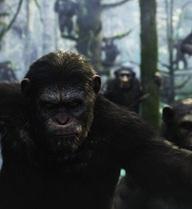Điều gì sẽ xảy ra nếu tất cả các loài động vật đều thông minh như con người?
