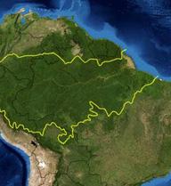 Những thảm họa tồi tệ gì sẽ ập đến nếu như rừng Amazon biến mất hoàn toàn?