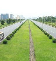 Đã phát hiện đơn vị liên quan đến việc cắt cỏ trên 24km Đại lộ Thăng Long tốn 53 tỷ đồng mỗi năm