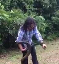 Choáng với cô gái liều lĩnh dám tay không bắt rắn dữ dài 2m