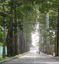 TP.HCM có tên đường Võ Chí Công, Võ Trần Chí, Nguyễn Cơ Thạch