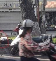 Hi hữu ở Hà Nội: Chủ say rượu ngủ giữa đường, chó nhất quyết đứng trông