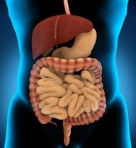 Sợ ung thư đại tràng, hãy uống cốc nước này 1 lần/tháng để làm sạch ruột già