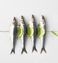 Ăn cá đã tốt, 7 loại cá này lại càng tốt hơn bạn không nên bỏ qua