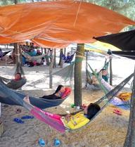 Hàng trăm người ra rừng dương ven biển dựng lều tránh nóng