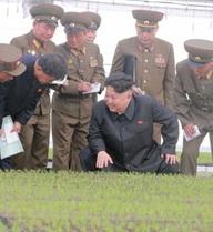 """Ông Kim Jong-un tìm thấy suối """"trường sinh bất lão"""""""