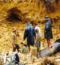 Lũ cuốn trôi lán công nhân khai thác vàng, 6 người thương vong