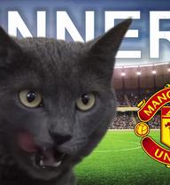 """CLIP: """"Mèo tiên tri"""" ngó lơ Man City, quyết theo Man United"""