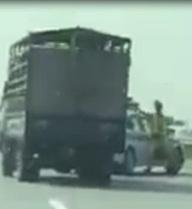 Xe chở heo đâm vào CSGT, phóng nhanh lên cao tốc bỏ chạy