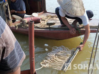 Thay đổi phương án tìm xác nạn nhân Lê Thị Thanh Huyền