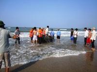 Ngỡ ngàng phát hiện rết khủng ở Quảng Nam