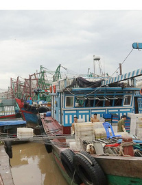 Tâm bão số 4 sẽ vào khu vực Thanh Hóa rạng sáng mai