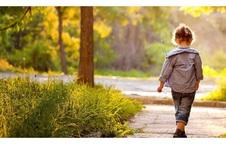 Ai cũng mải miết theo đuổi hạnh phúc mà quên mất rằng trên đời còn có những thứ quan trọng hơn