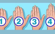 Hãy xem hình dáng bàn tay mình, bạn sẽ nhận thấy những nhược điểm mà đôi khi bản thân còn chưa kịp nhìn ra