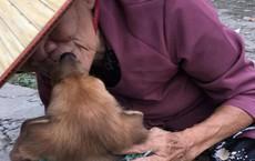 Tình tiết bất ngờ phía sau câu chuyện bà cụ nghèo ở Sài Gòn phải bán chó lấy tiền chữa bệnh