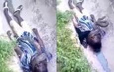 """Video: Trăn cưng khổng lồ bất ngờ """"nổi điên"""", siết cổ chủ đến chết"""