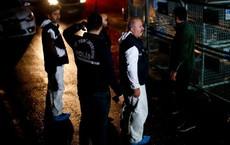 Tình tiết nghẹt thở: An ninh TNK ập đến sân bay, cải trang lục soát máy bay Saudi nhưng... chịu thua