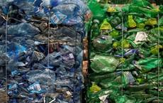 Nhiều cường quốc lâm vào cảnh khốn đốn vì Trung Quốc ngừng nhập khẩu... rác