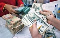 Công an Cần Thơ thông tin vụ anh thợ điện đi đổi 100 USD bị phạt 90 triệu đồng