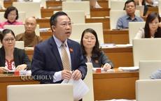 """Đại biểu Lưu Bình Nhưỡng giải thích lại """"thông tin làm lực lượng công an dậy sóng"""""""